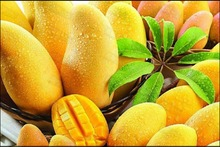Thailand Fruit Import to China full Agent