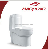 Hot Sale Floor Mounted Muslim Toilets/One Piece Siphonic Chemical Toilets