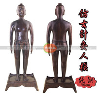 Chinese male body model for acupuncture meridian and extraordinary points