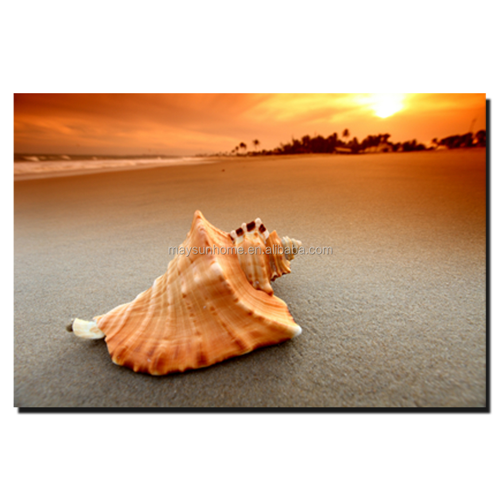 a large shell canvas art for sale in adelaide