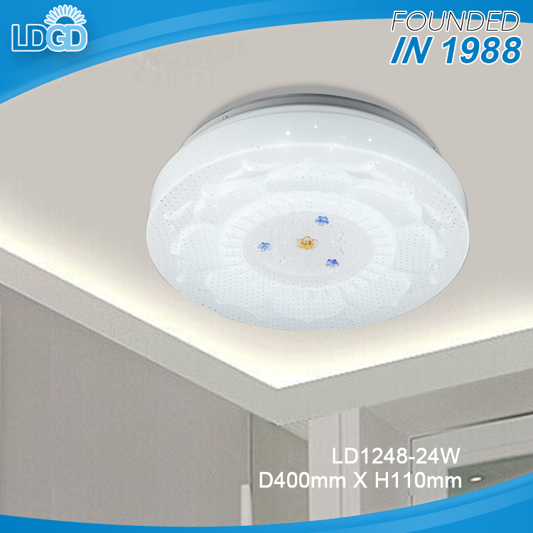 220V 24W LED Ceiling light Acrylic Round Kitchen Light Modern Lamp Restaurant/Bathroom Lamp