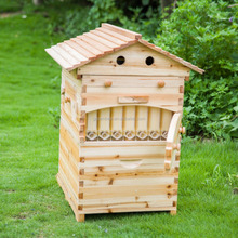Honey automatic flow bee hive with7 pcs flow frame
