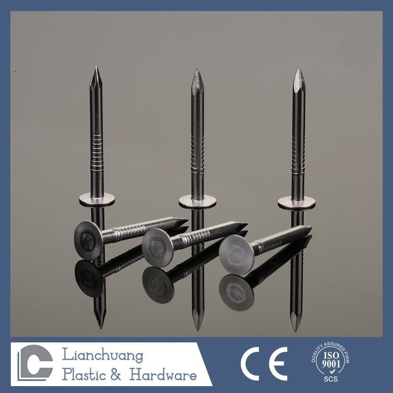 stainless steel smooth shank/plain shank roofing nails
