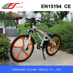 250W electric bike motor mid drive in korea with EN15194