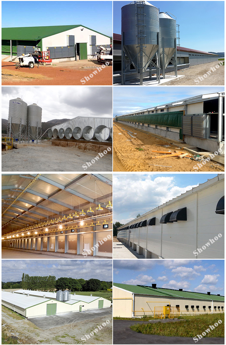 China Prefabricated Automatic Steel Poultry Farm House For 10000 Chickens