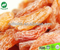 dried apricot dried fruit fruit snack