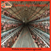 Antirust chicken egg layer cage / laying hen cages for sale / large animal cages