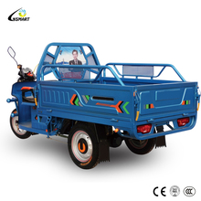 high quality van cargo tricycle for sale in india-tina