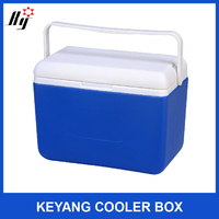 8L bottle cooler Outdoor Plastic Insulate Ice Cooler Box