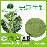pure instant green tea powder from China