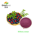 Best selling antioxidant bilberry extract