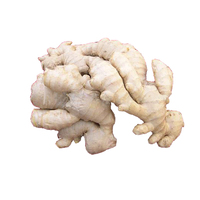 Varieties of ginger for sale