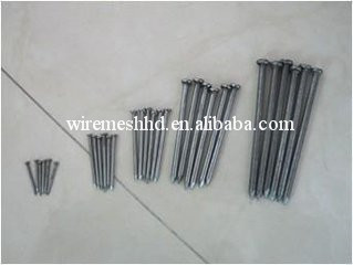 Factory hot sale galvanized common nails from China