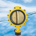 Lug type butterfly valve with pin with C95400 disc