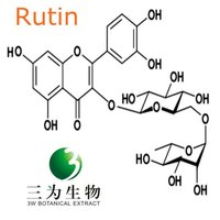 Rutin Extract powder from GMP Manufacturer