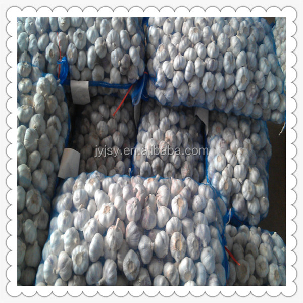fresh high quality natural garlic for sale / good farmer garlic / garlic seeds