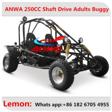 Hot selling 200cc/270cc 6.5HP/9HP 4 stock single seat go kart off road with safety bumper pass CE certificate