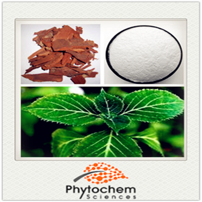 Natural Plant Raw Material Bark Part Yohimbe Extract with 8% Yohimbine 98% Yohimbine HCl