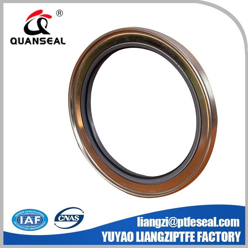 Single Lip Oil Seal Rotary Shaft Seal