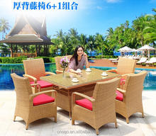 Wholesale Garden / Outdoor Leisure Wicker Rattan chair Sets / Rattan Sofa Sets (Z559)
