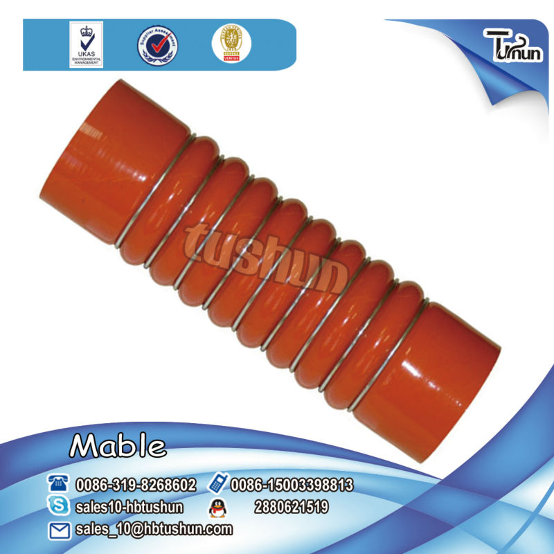 OEM 5010514310/5010315483/5010315487/5005026298/5010095482 Renault silicone rubber hose