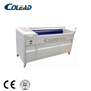 electrical root vegetable peeling machine/peeler and washing machine for ginger/potato/carrot cassava from binzhou colead
