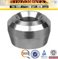SS304/316L Stainless Steel Olet/Threadolet/Weldolet/Sockolet ,Socket Pipe/Tube Seat