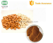 New arrival GMP OEM factory supply gold standard cashew nut extract,cashew nut powder with nice price