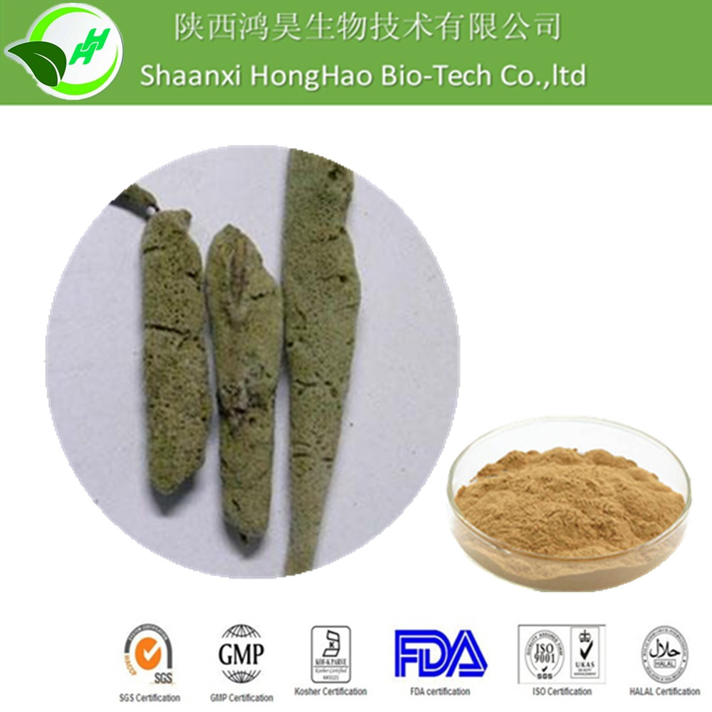 Hot sales Spongilla extract/Ratio 10:1 20:1/Detumescence Factory supply