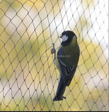Alibaba china new arrival new material anti bird bop stretch net