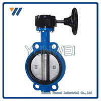 Big Size Ductile Iron Butterfly Check Valve Made in China
