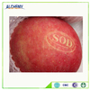Wholesale competitive price fuji apple exporter in china fuji fresh style fresh apple