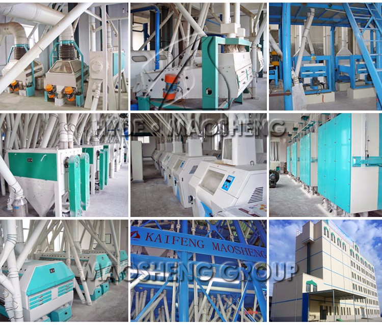 MSQ automatic wheat flour making machine