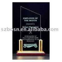 crystal acrylic contribution award certificate template