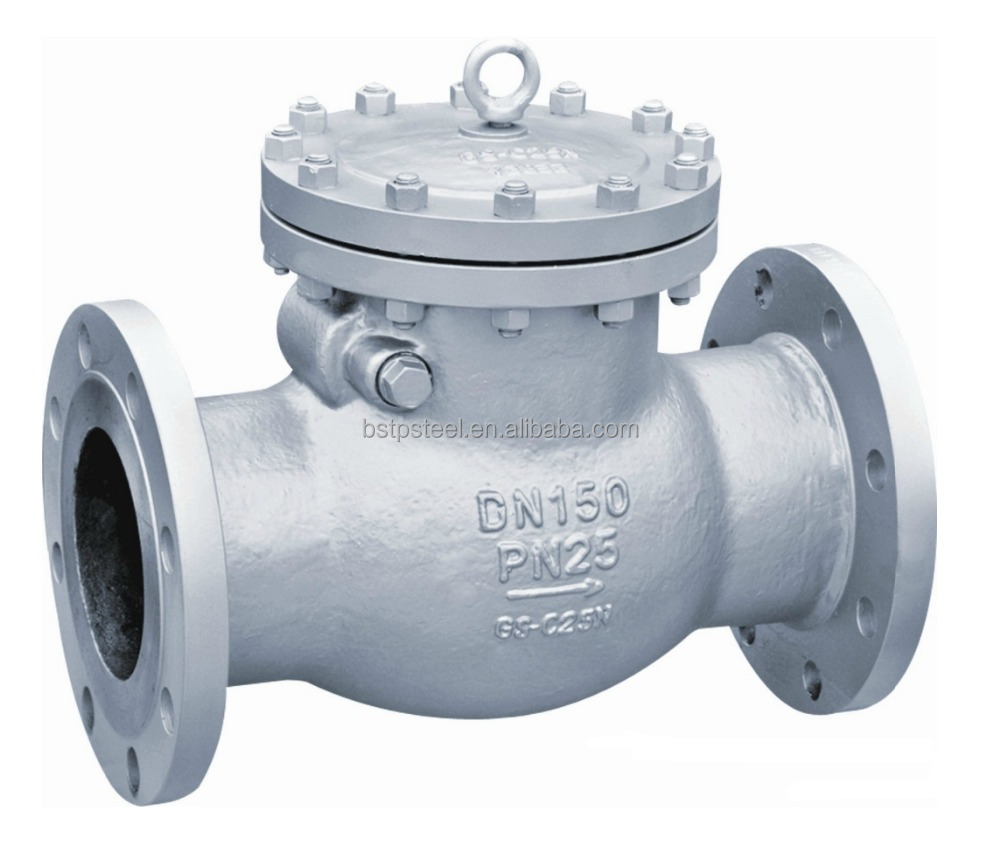 Flange Connection Swing Type Check Valve 10 Inch
