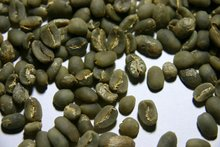 Mandheling Arabica - Lintong (Sumatra Indonesia Green Coffee Bean)
