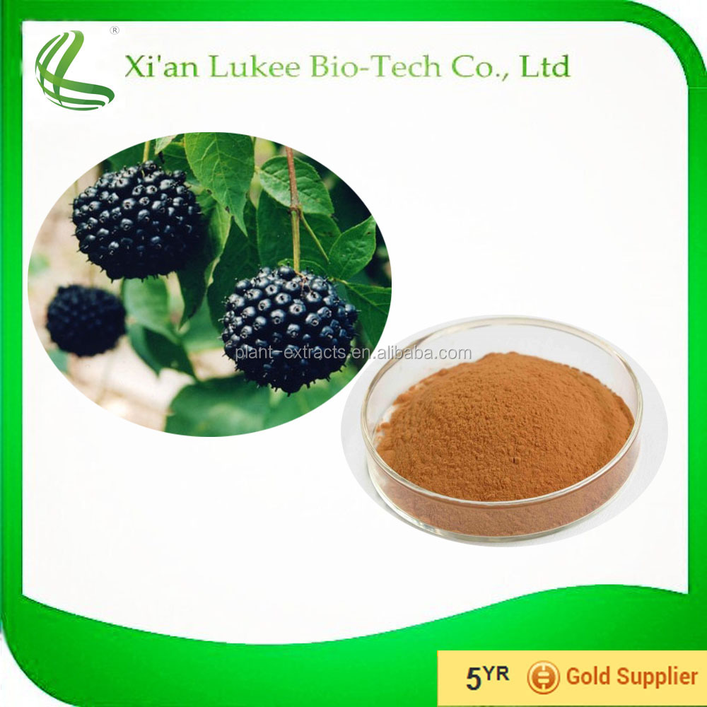 Black Raspberry Juice concentrate Powder