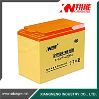 China high quality electric bicycle/car battery lead acid battery