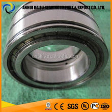 SL04 5005 PP Double Row Size 25x47x30 mm Full Complement Cylindrical Roller Bearing SL045005PP