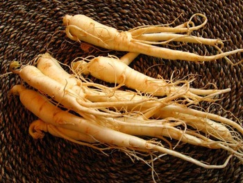 Factory Supply Korean Red Ginseng Root P.E./Korean Red Ginseng P.E.
