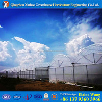 Industrial Hydroponic System Plastic Agricultural Greenhouse