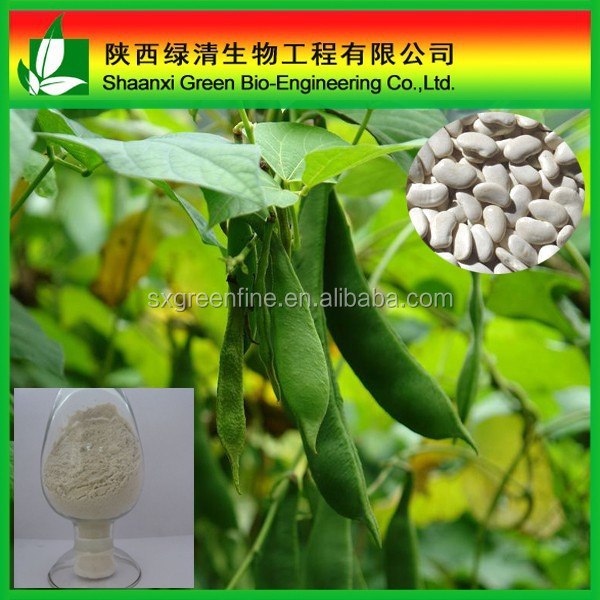 White Kidney Bean P.E./White Kidney Beans Powder/CAS No.: 85085-22-9