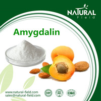 Factory Supply Bitter Apricot Kernels Extract, Best Sells Product Vitamin b17, Chinese Supplier Amygdalin