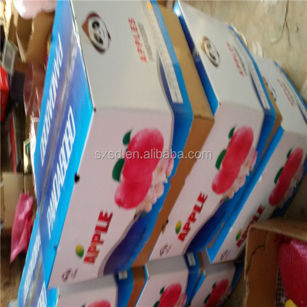 Good quality low price fresh red gala apple fruit