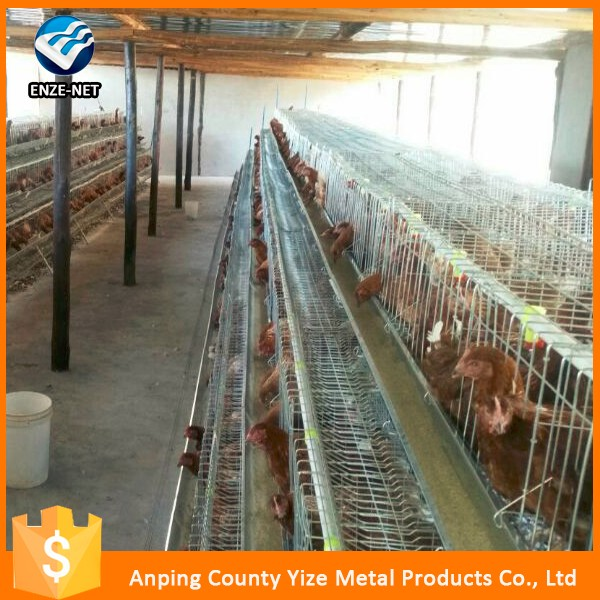 Chinese Cheap Industrial Chicken Coop Design