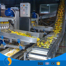 Fruit apple orange juice concentrate production line