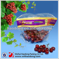 Factory Custom Printing Zipper Pouch Plastic Food Grade Packing Fruit Bagging