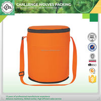 Handy carry insulated cooler bag