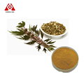 Natrural product motherwort herb extract powder 10:1 TLC