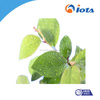 natural surfactants Agricultural silicone surfactant IOTA2000